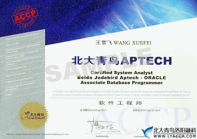 北大青鸟ACCP认证(软件工程师)-洛阳北大青鸟