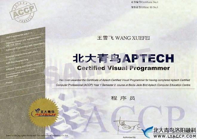 Visual Programmer程序员-洛阳北大青鸟